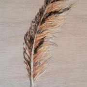 FEATHER TRIBE - FEATHER -4
