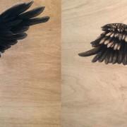 LOYALTY & COURAGE – Spirit Bird Diptych by Sunshine Coast Artist Darren Trebilco