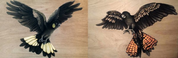 LOYALTY & COURAGE  – Spirit Bird Diptych