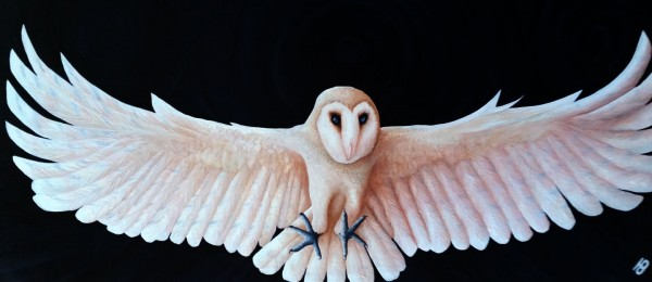 SHIA - A lovely Barn Owl created by Artist Darren Trebilco can be viewed at the Sunshine Coast Solitude Art Gallery/Open Studio Glenview QLD