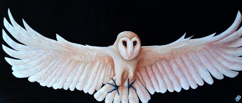 'SHIA' – Barn Owl